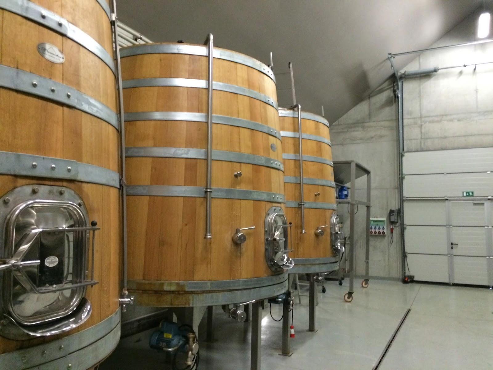 modern wine celler