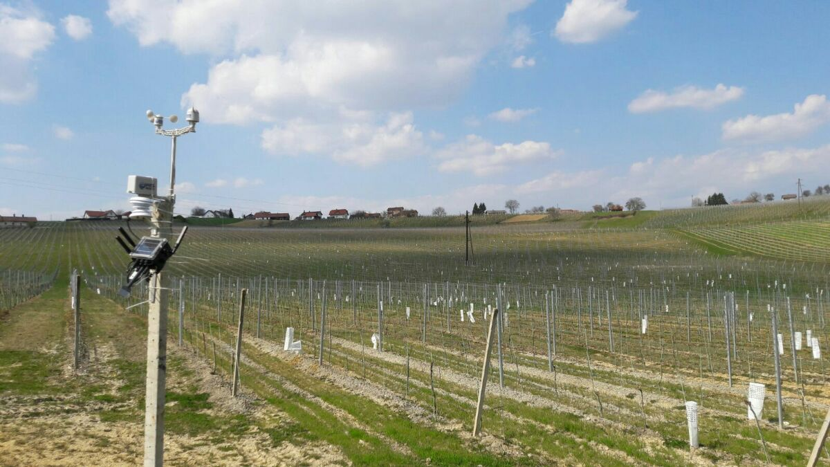 eVineyard-weather-station-in-vineyard