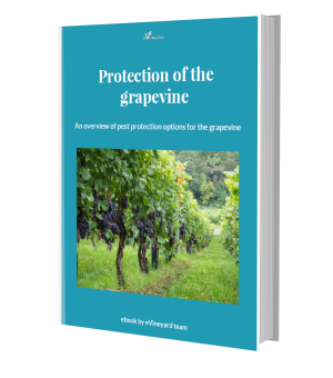 e-book: Protection of the grapevines