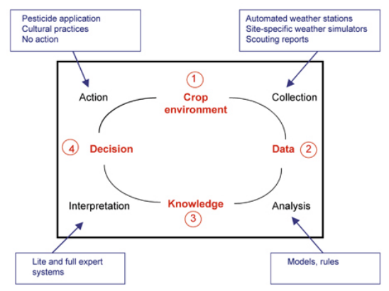 An idealized Decision Support System for plant disease management
