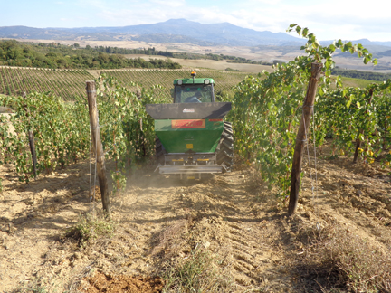 Post-harvest vineyard fertilizing enable vines to get all the necessary nutrients for winter dormancy and spring growth.