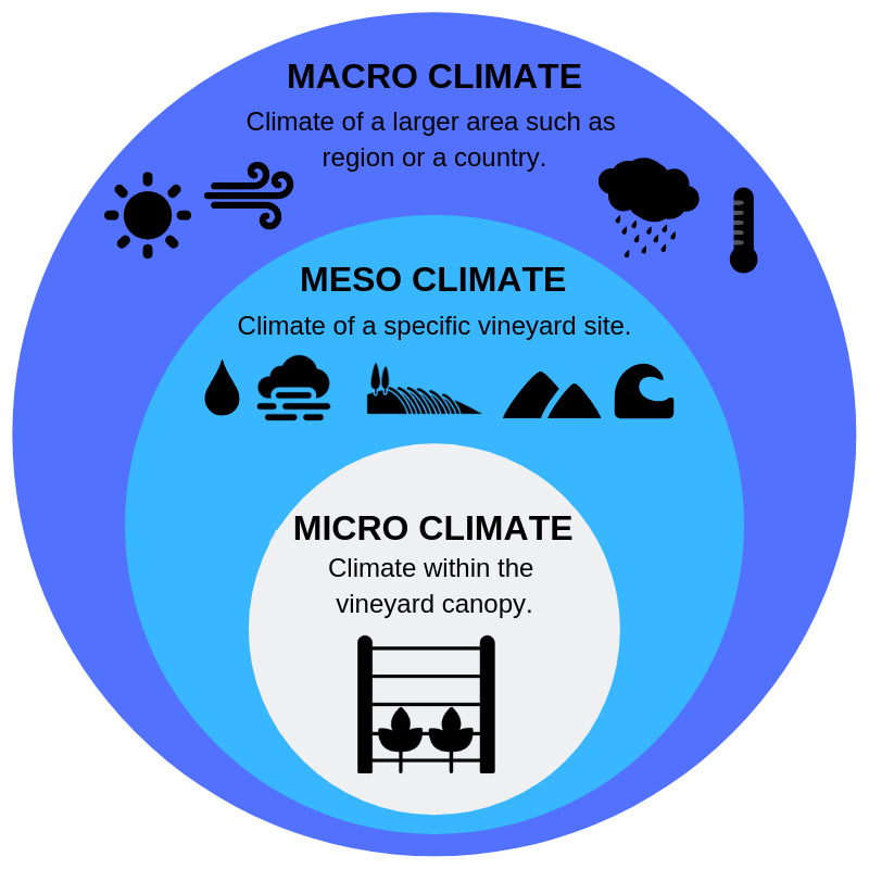 vineyard - Macro-, Meso-, and Micro- climate