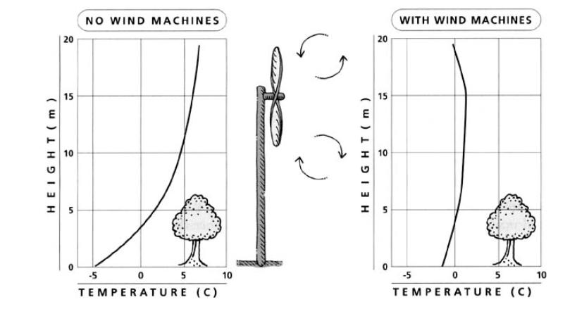 wind machines-radiation frost
