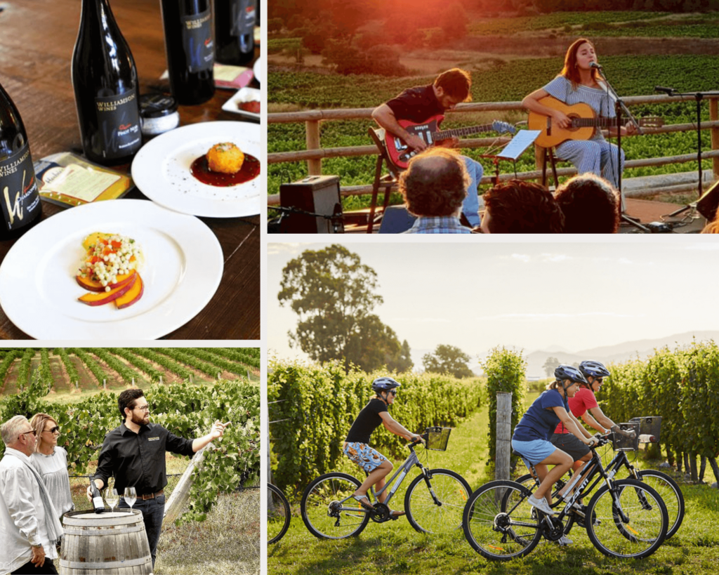 Organize winery tours and events