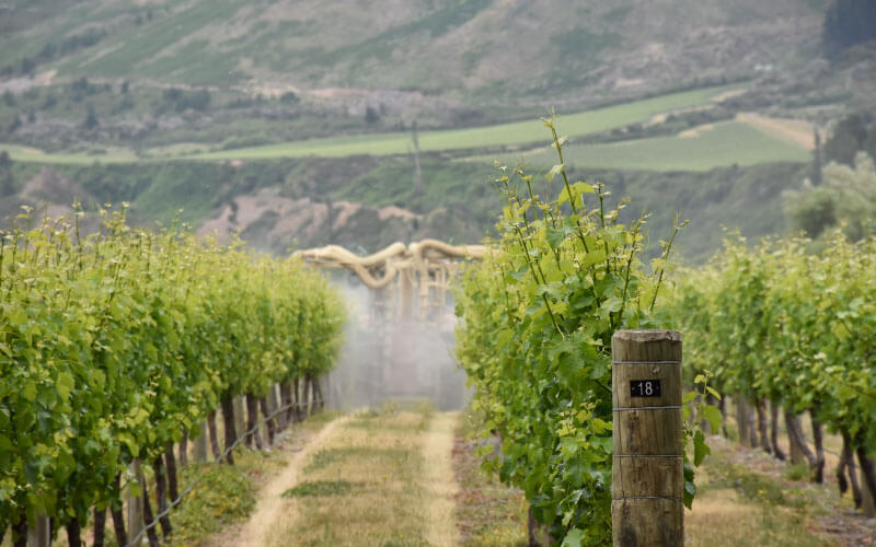 optimize-spraying-in-vineyard