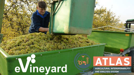 evineyard-among-top10-ag-software-solutions