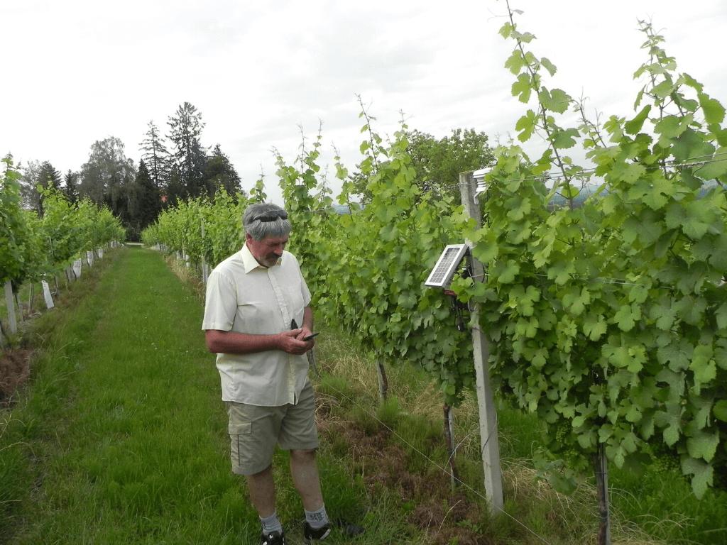 Optimize vineyard management